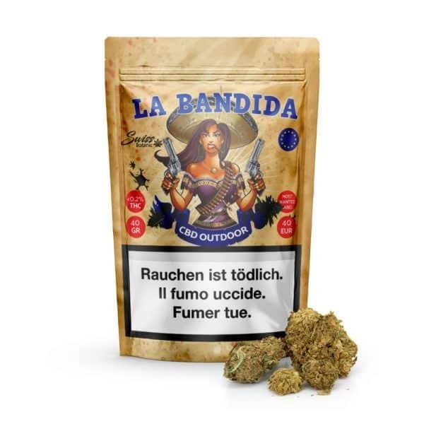 Bandidaeu 1000x1000 1